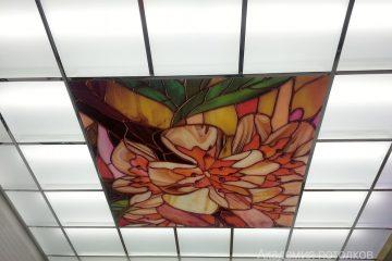 """Матовый потолок с фотопечатью """"Цветок""""."""