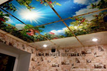 """Кассетный потолок с фотопечатью """"Яблоневый сад"""" в коридоре."""