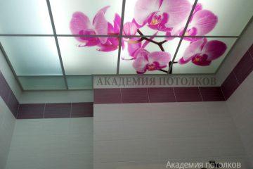 """Потолок матовый с декором """"Ветка сакуры""""."""