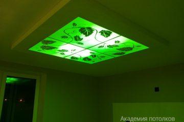 """Потолок с декором """"Виноградная лоза"""" и зеленой подсветкой"""