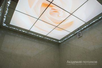 """Потолок с фотопечатью """"Роза"""" и зеркальным стеклом"""