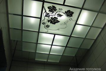 """Потолок с матовым стеклом, декором """"Виноградная ветвь"""" и черными вставками"""