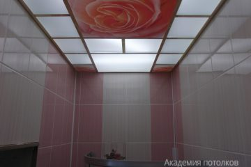 """Потолок матовый с золотыми вставками и фотопечатью """"Роза"""""""