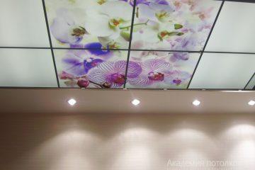Потолок в ванной. Фотопечать на акриле.