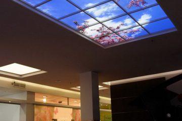 """Комбинированный потолок с фотопечатью """"Небо"""" в торговом центре."""