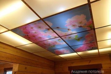 """Матовый потолок с фотопечатью """"Сакура"""" в коттедже."""