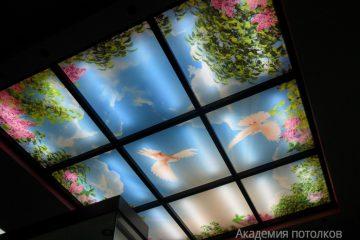 """Потолок с перегородками и фотопечатью """"Голуби в саду""""."""