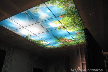 """Потолок с подсветкой по бокам и фотопечатью """"Яблоневый сад и небо"""" в зале."""