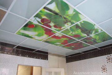 """Белый потолок с вставками и фотопечатью """"Вишня"""" в кухне."""