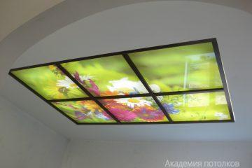 """Потолок белый с фотопечатью """"Полевые цветы"""" и коричневыми вставками."""