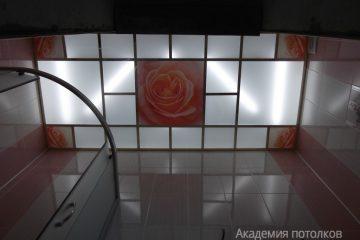 """Матовый потолок со вставками с фотопечатью """"Роза"""" в ванной."""