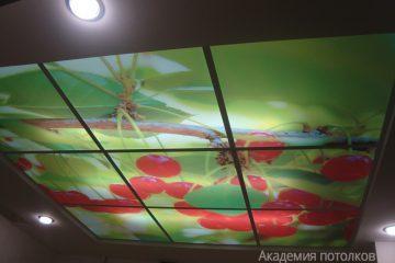 """Потолок с подсветкой и фотопечатью """"Вишня""""."""