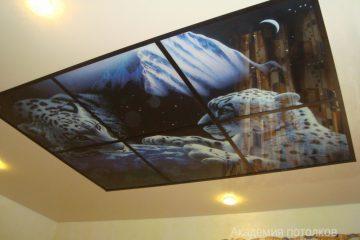 """Потолок с подсветкой и фотопечатью """"Барсы и звездное небо""""."""