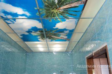 """Матовый потолок с фотопечатью """"Пальмы и небо"""" в ванной."""