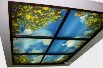 """Потолок с фотопечатью """"Лимонные деревья и небо""""."""