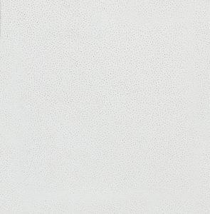 Потолочная минеральная плита Скала (SCALA ) (595×595×12мм)