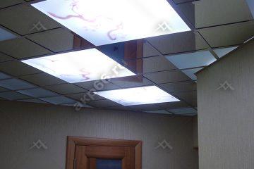 Потолок с декором Орхидея в коридоре