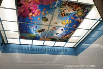 Потолок в ванной. Фотопечать с матовым стеклом.