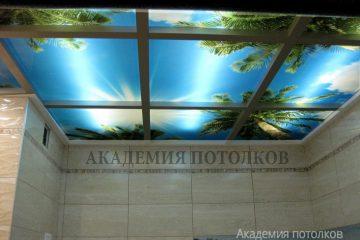 """Фотопотолок """"Небо и пальмы"""" с подсветкой."""