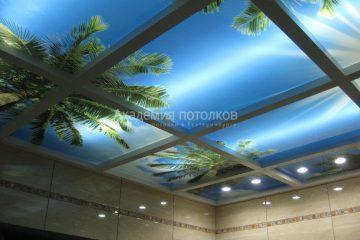 """Фотопотолок """"небо и пальмы"""" в ванной"""