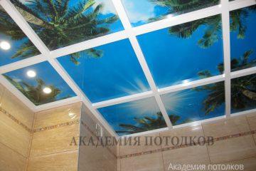 """Фотопотолок """"Небо и пальмы"""" с подсветкой в ванной."""