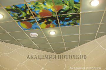"""Потолок бежевый со вставками и фотопечатью """"Лимонное дерево"""" в кухне."""
