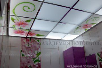 Матовое стекло с подсветкой и цветочным декором в ванной.