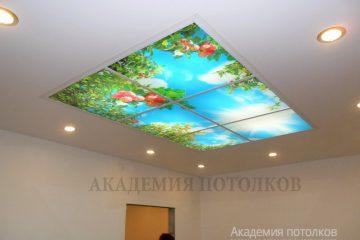 Потолок в кухне. Фотопечать в нише из гипсокартона.
