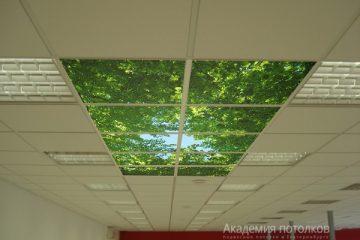 Потолок типа Армстронг Лилия на белой подвесной системе в центре фотопечать на стекле или акриле