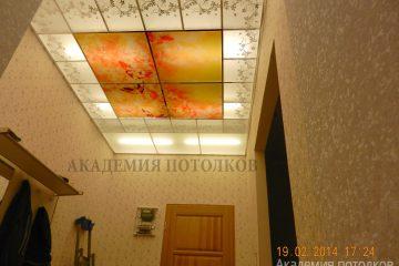 Фотопотолок в прихожей. скомбинирован с пескоструйными декорами и матовым стеклом.