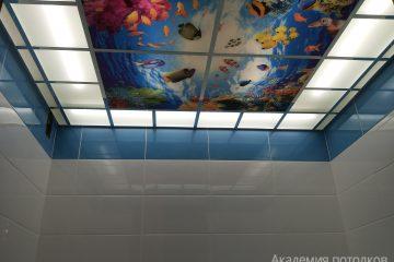 """Матовый потолок с фотопечатью """"Подводный мир"""" в ванной."""