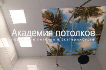 Потолок в ванной комнате с фотопечатью Пальмы