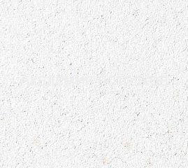Потолочная плита Биогуард (BioGuard) (595x595x12мм)