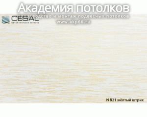 Вставка S-25 (желтый штрих) В21