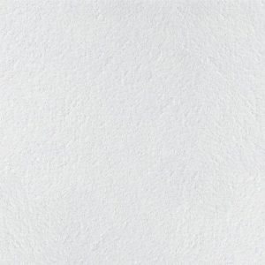 Минеральная потолочная плита Ритейл 595х1195х14мм